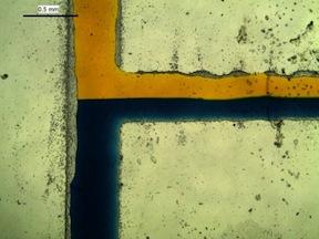 "(Detail) A microfluidic device illustrates laminar flow"""