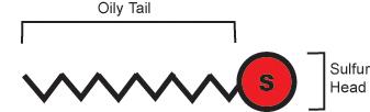Alkanethiol Diagram
