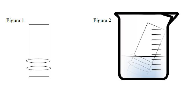 Figure 1 and Figure 2