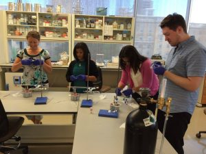 RET fellows work on a lab activity