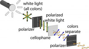 White light from a flashlight becomes polarized, then passes through cellophane. Cellophane acts as a half wave plate, causing the colors to phase shift, with the second polarizer allow only colors aligned with it through.